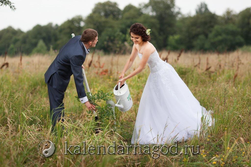 Благоприятные и неблагоприятные дни для свадьбы в ноябре 2021 года